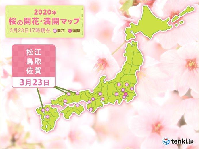 松江・鳥取・佐賀も桜開花 桜以外の花も続々