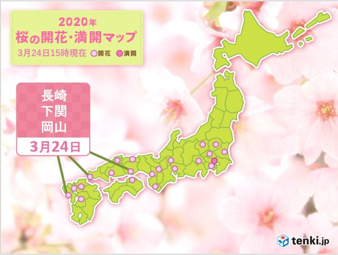 長崎、下関、岡山で桜開花 東京の桜も見ごろ続く