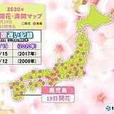 鹿児島 記録的に遅い桜満開