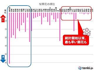 関東周辺は記録的に早い開花も 鹿児島ようやく桜開花