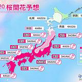 桜前線はいよいよ東北へ 2020年桜開花予想(第7回)