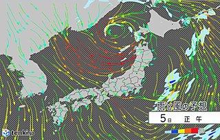 寒気流入 花びら散らす北風 北陸以北で雪、雷雨
