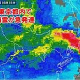 東京23区に大雨警報 都心の日降水量100ミリ超 4月1位
