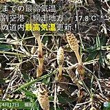 北海道 今年の最高気温を更新する陽気に