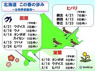 北海道 この春の歩み 生物季節観測