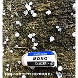 千葉県で「ひょう」 夜まで急な雨や落雷、ひょう注意 関東