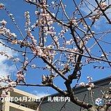 明日(29日)も広く花を育む雨に