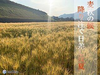 四国 5月の日差しは夏の勢い 紫外線対策を万全に