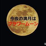 今夜の満月は「フラワームーン」 天気は?