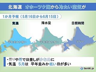 北海道の1か月 日差し少なく空気ヒンヤリ