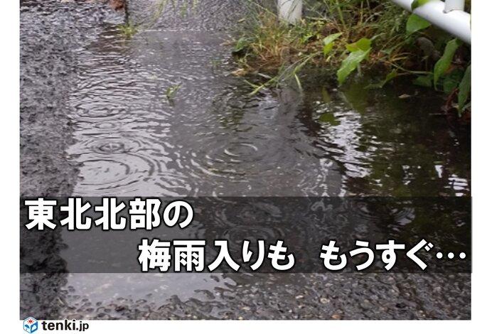 14日(日)まとまった雨で東北北部も梅雨入り間近