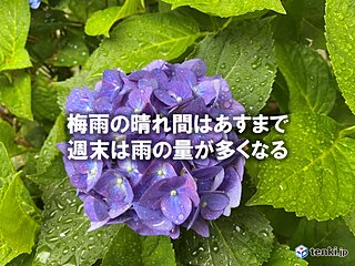 関東 あすは晴れて暑さが続く 一転、週末は雨量多く 梅雨寒に