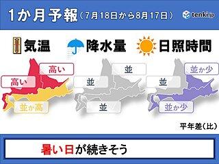 北海道の1か月 夏本番 気温の高い日が多くなる