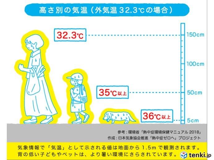 厳しい暑さ続く 来週は関東から西で猛暑日地点が急増_画像