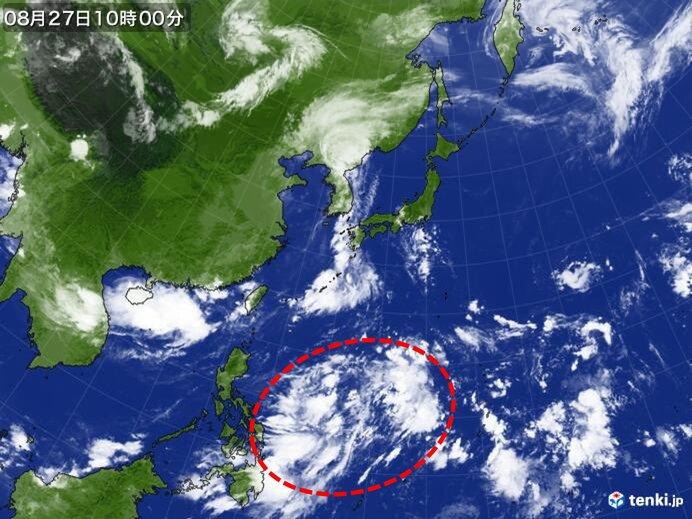 来週は次の台風北上か