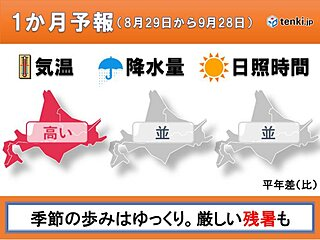 北海道の1か月予報 季節の歩みは遅い!?まだまだ残暑が厳しく