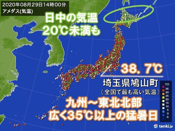 日 稚内 真夏 2019年 猛暑日、真夏日等の日数の一覧