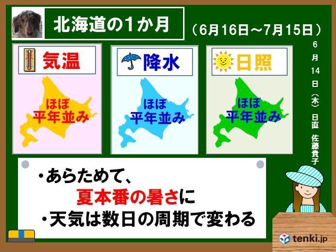 北海道1か月予報 夏が再スタート!