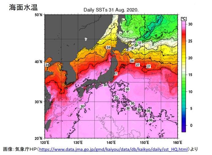 海面水温が過去最高気温を更新 台風の発達にも影響か
