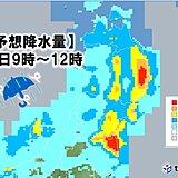 東北 台風12号 太平洋側で雨や風が強まる