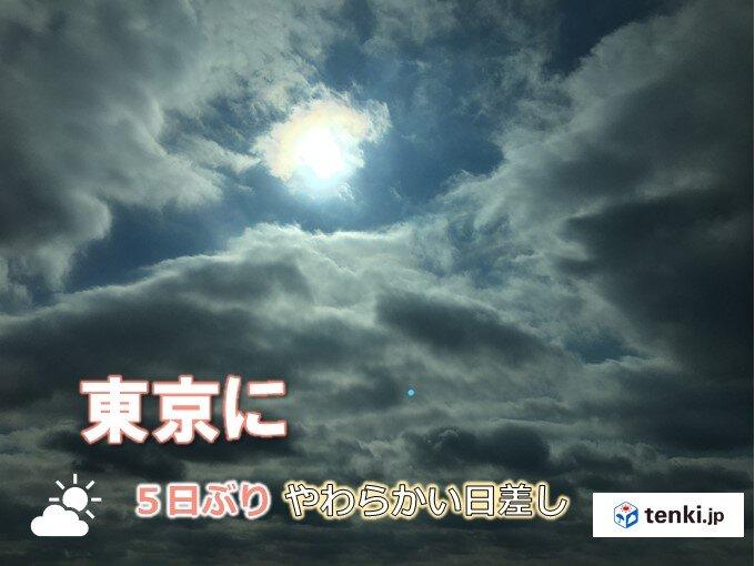 東京都心5日ぶりに太陽が顔をのぞかせる あすは待望の秋晴れ