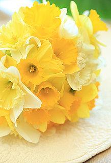 花暦・三月 「水仙」 ~希望の象徴として、今年も祈りとともに咲きます。