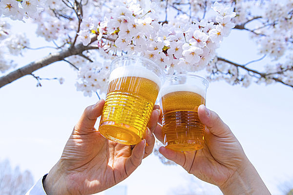 「お花見シーズン」の画像検索結果