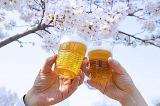 桜の開花ももうすぐ! お花見シーズン直前の今、知っておきたい「お酒のなぜ」をご紹介!