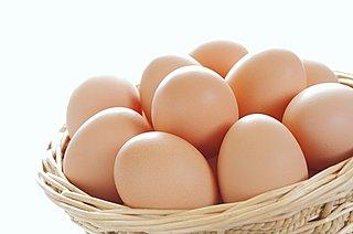 卵の賞味期限が過ぎても食べられるってホント? 生卵とゆで卵の見分け方は? 卵の話アラカルト