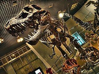 4月17日は「恐竜の日」。ゴビ砂漠で初めて恐竜の卵を発見した学者は、あの有名映画のモデルだった!?