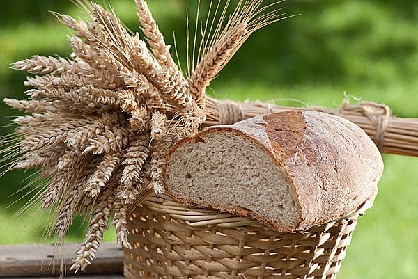 は 時 パン 落ちる 食べるその時が焼きたての冷凍パン Pan&(パンド)を紹介するにゃ