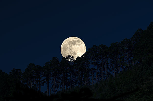 「月の満ち欠け」が教えてくれる、 4つの時間の意味とは?