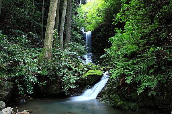 「養老の滝」伝説に着想を得て「敬老の日」が生まれた説も