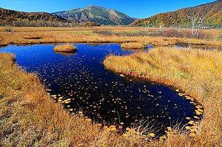 秋のさわやかな気候を満喫!お手軽ハイキングエリア5選|ハイキング特集【2016】