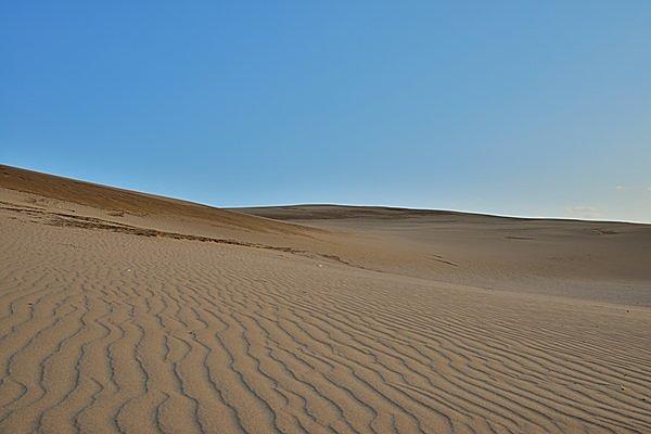 鳥取の誇り「鳥取砂丘」