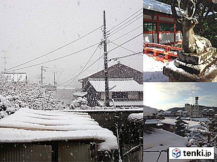 5位 元日 都心で9年ぶりの雪 京都は大雪の初詣