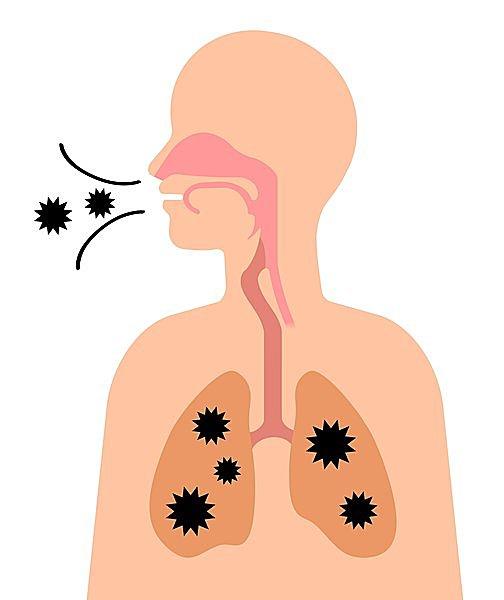 のどが乾燥していると、体にウイルスが侵入しやすくなる!