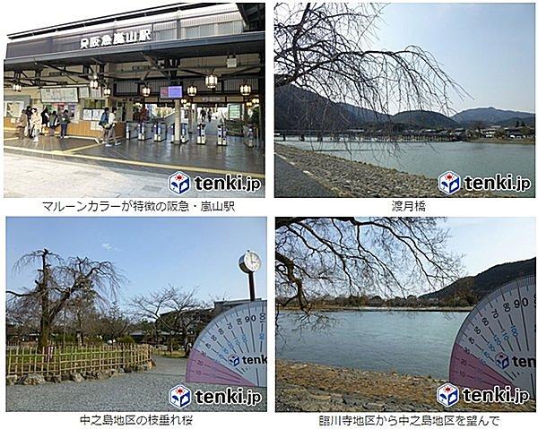 月食花見鑑賞スポット:京都編~嵐山公園~