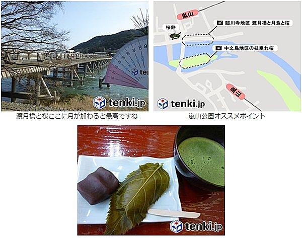 桜と皆既月食「月食花見」を楽しもう~tenki.jpラボVol.5~その2_画像