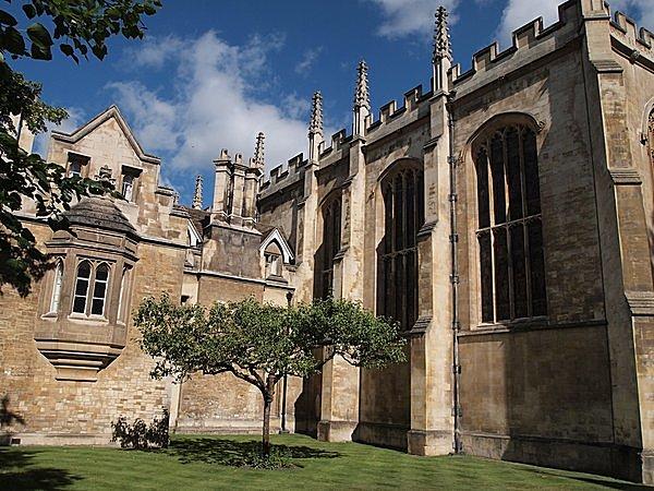 ニュートンのりんごの木(ケンブリッジ大学 トリニティカレッジ)