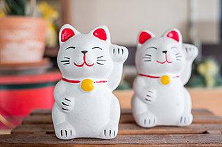 「ネコの日」にちなんで、世界の「猫にまつわる民話」をお届け!