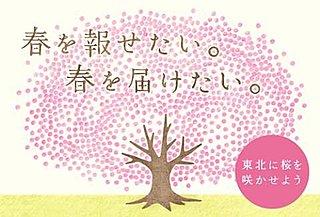 桜が描かれた百円玉で、東北に満開の桜を