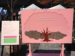 桜も温かい心で満開に(結果のご報告)