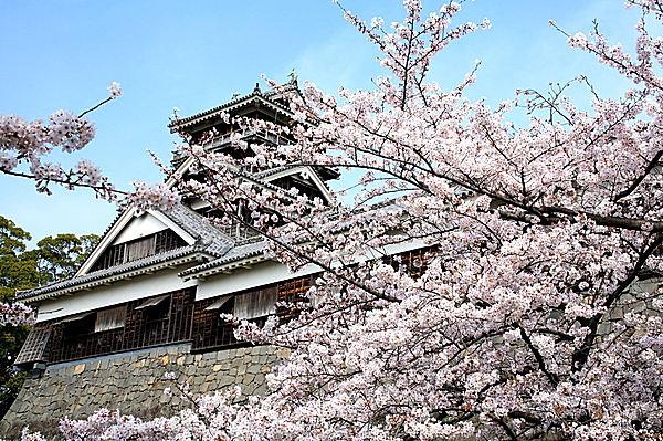 特集|【九州の桜の名所】九州の桜の見頃は3月下旬 ~ 4月上旬!