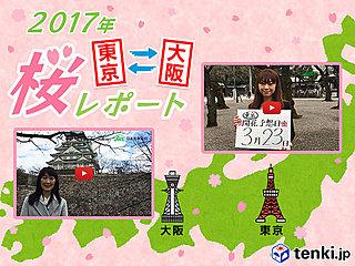 第2回 東京・大阪桜レポート2017