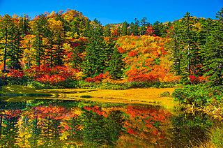 日本一早い紅葉を見に行こう!!〈北海道の紅葉スポット~道北・道東エリア〉