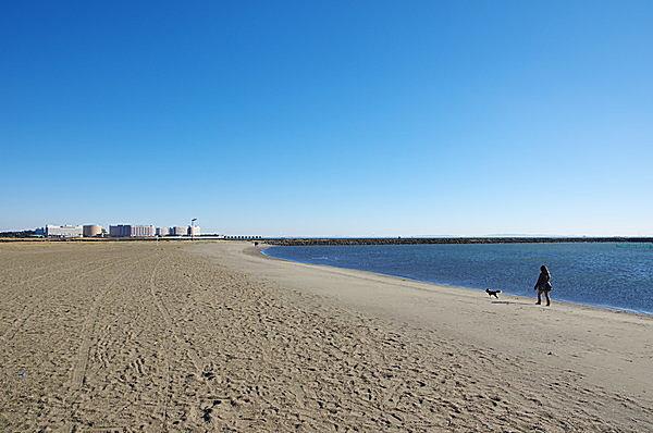 葛西臨海公園の砂浜