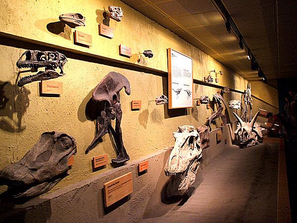 5月18日は「国際博物館の日」。今週末は博物館に足を運んでみませんか?