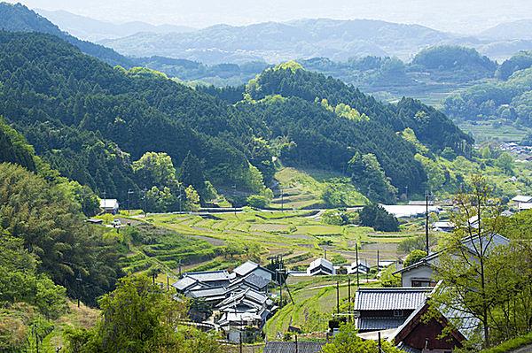 かわいい名前のあの人が殺された!! 日本古代史最大のクーデター、乙巳の変(いっしのへん)とは?