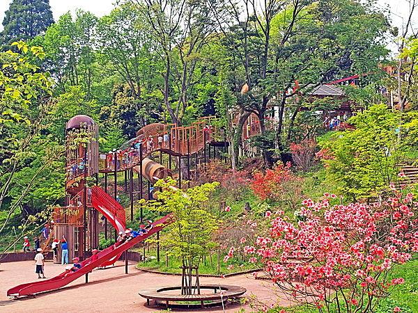 昭和の森公園のアスレチック遊具